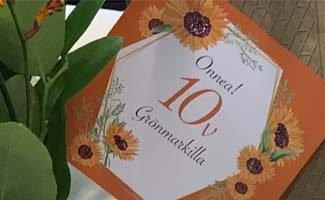 Tuija Almi 10 vuotta Grönmarkilla